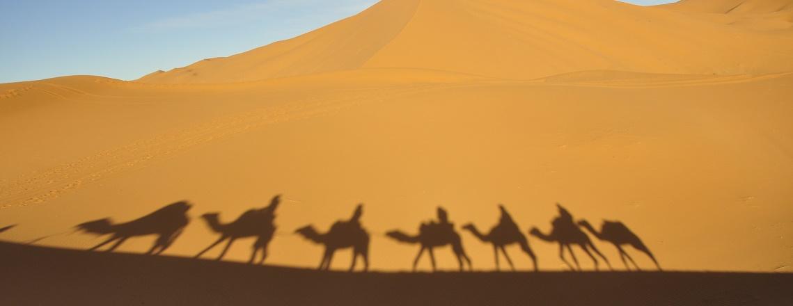 sombras-en-las-dunas